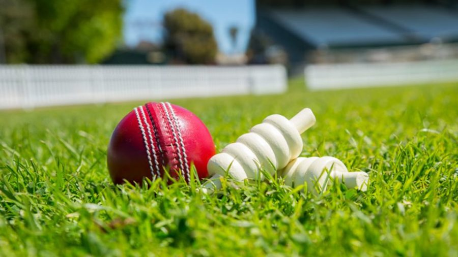 Four matches of DPL T20 to be held on Monday