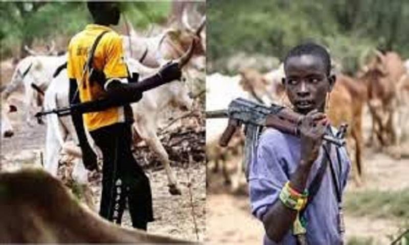 16 killed in attack by suspected herdsmen in Nigeria