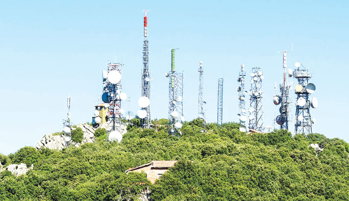 Mobile Tower Radiation: Are Birds Disappearing?