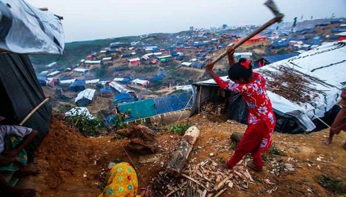 Rohingyas eating up much of Bangladesh forests: Foreign Minister