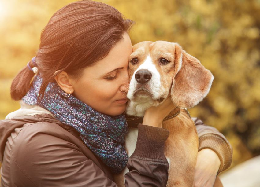 Dog's Personalities Change Over Time Similar to Humans