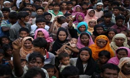 Efforts-underway-to-repatriate-Rohingyas-to-Myanmar:-Momen