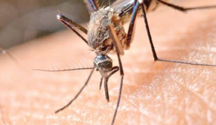 Study finds potential new weapon in fight malaria