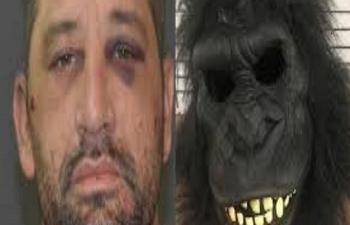 Man with gorilla suit to peep through people's windows'