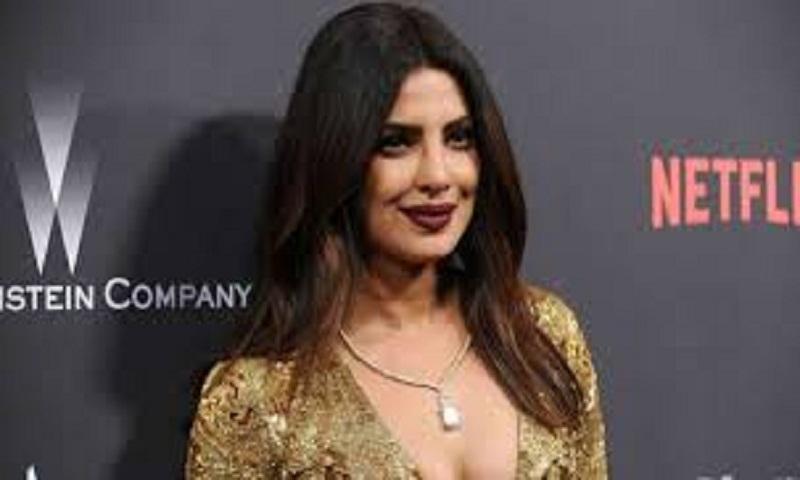 Priyanka Chopra says glorifying trolls adds pressure on entertainers