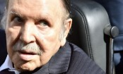 How does reclusive President Bouteflika run Algeria?