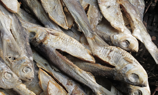 Govt plans to build modern dry fish processing zone in Cox's Bazar