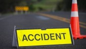 Seven killed in road crashes in 4 districts