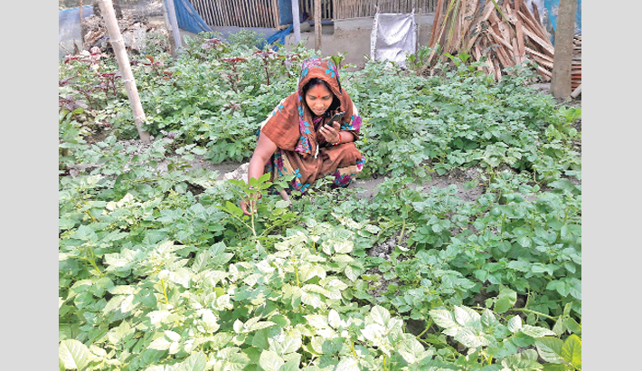 Woman takes care of vegetables grown