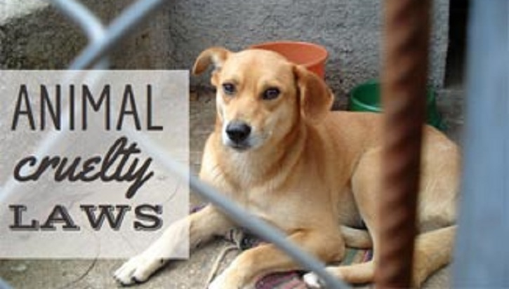 Bill placed at JS to save animals from cruelty