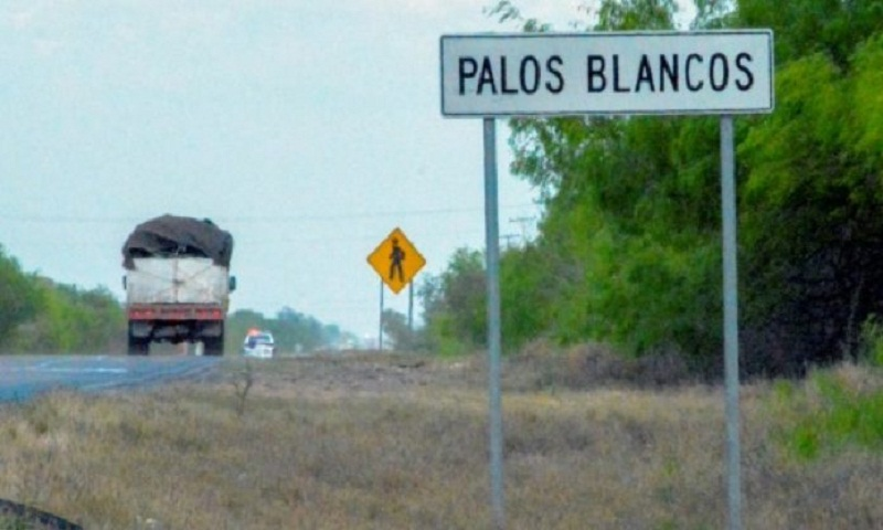 19 migrants kidnapped from bus in Mexico