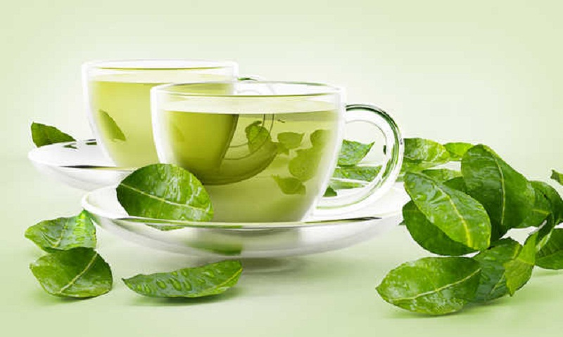 Green tea may cut obesity risk, other health disorders