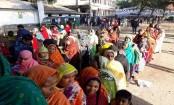 Voting underway in 116 upazilas