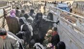 Thousands believed still inside last IS pocket