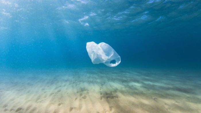 Plastic pollution threatens marine and wild life