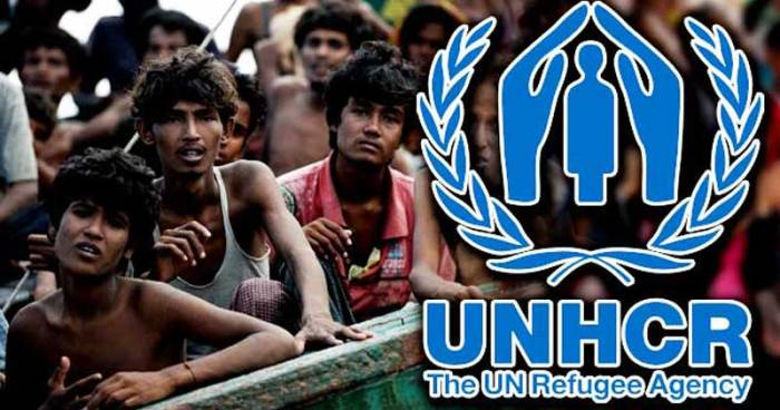 Future of Rohingyas lies in their return with full restoration of rights: UNHCR