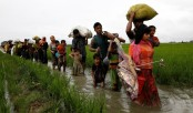 Probe into grave HR violations in Rakhine remain absent: UN