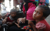 Icddr,b shares Rohingya healthcare response with partners