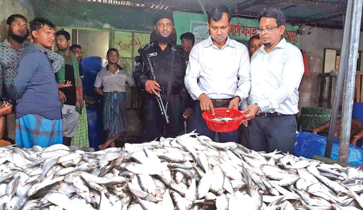 A mobile court run by Rapid Action Battalion and Fisheries Department seizes a huge quantity of Jatka