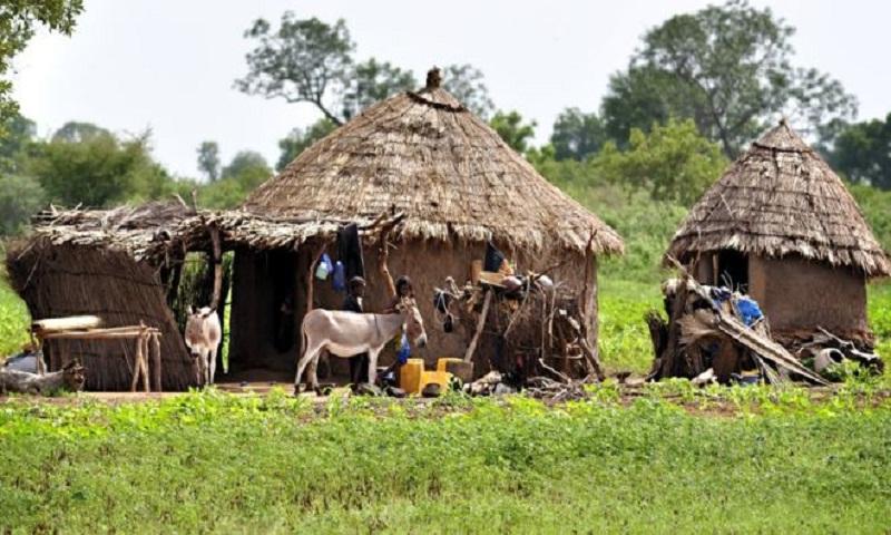 More than 100 Mali villagers killed by gunmen