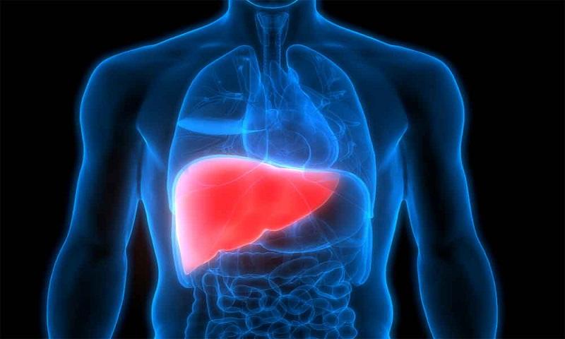 Hypertension drug shows promise in liver disease