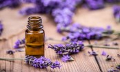 5 essential oils that can improve your mental and emotional health