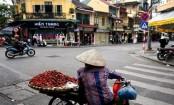 Vietnam GDP growth hit by swine flu