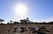 Australia sees record temperatures for fourth month in a row