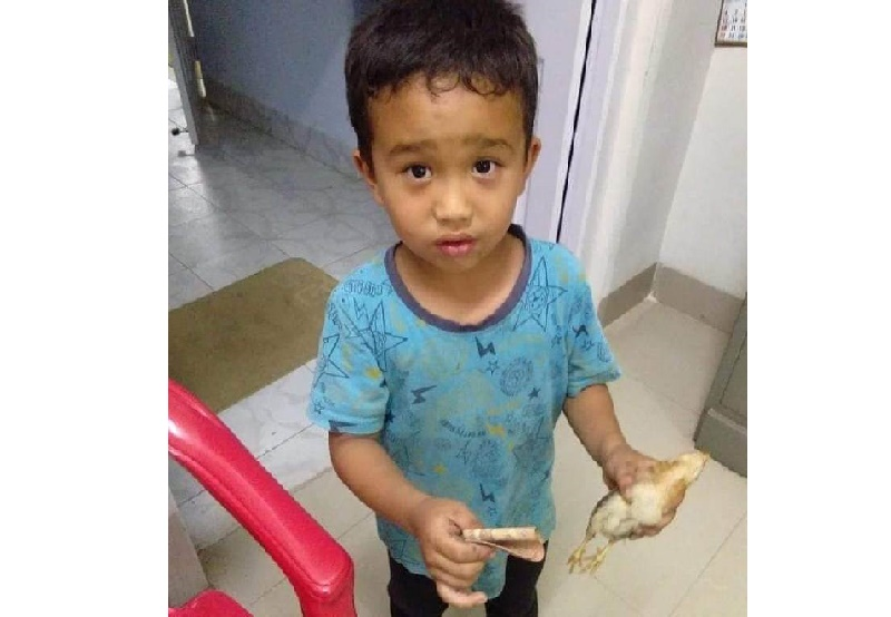 Indian boy runs over chicken, rushes it to hospital with his 'savings'