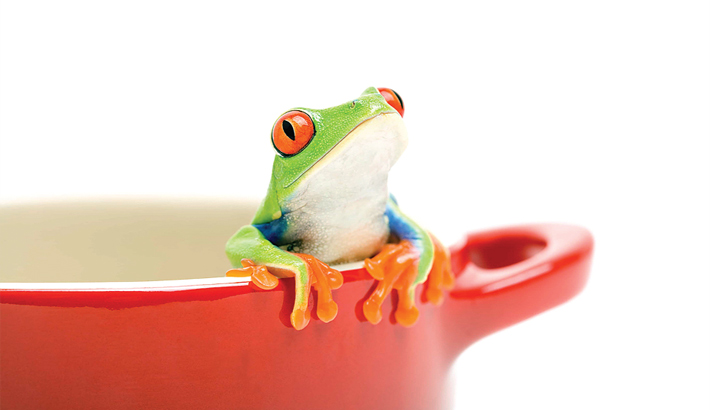 Are We Suffering From Boiling Frog Syndrome?