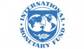 Trade balances mostly driven  by economic forces: IMF