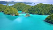 Palau Island and its Jellyfish Lake are open to the public again