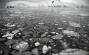 Dire future etched in the past: CO2 at 3-million year-old levels