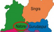 Man killed in Natore road crash