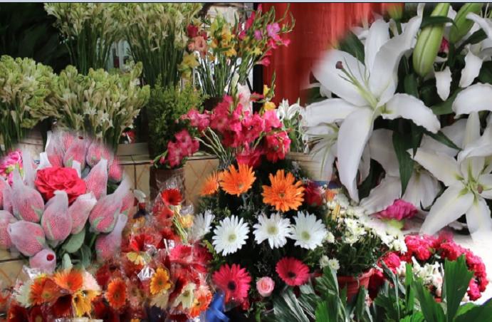 Govt moves to strengthen flower marketing system