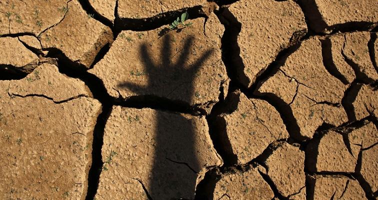 Bangladesh seeks global collective efforts to save planet