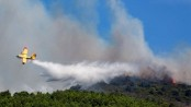 Italian students' BBQ results in €13m fine for forest fire