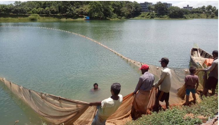Fishing banned in Kaptai for 3 months