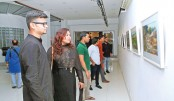 Painting exhibition 'Rupomoy Bangla' underway at AFD