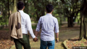 Gay HIV transmission with treatment is 'zero risk'