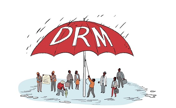 Disability-Inclusive Disaster Risk Reduction
