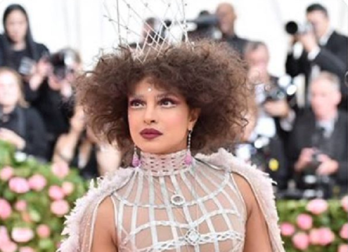 Priyanka Chopra's Met Gala outfit perfectly matched the theme