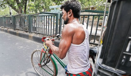 Scorching heat slows life