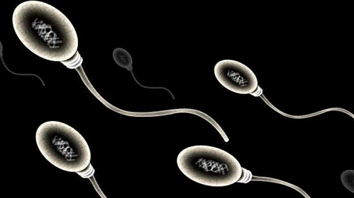 Fertility in danger! Men try having family before it's too late