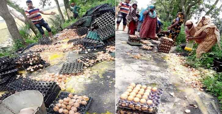 6 cops closed in Natore for destroying 35,000 eggs