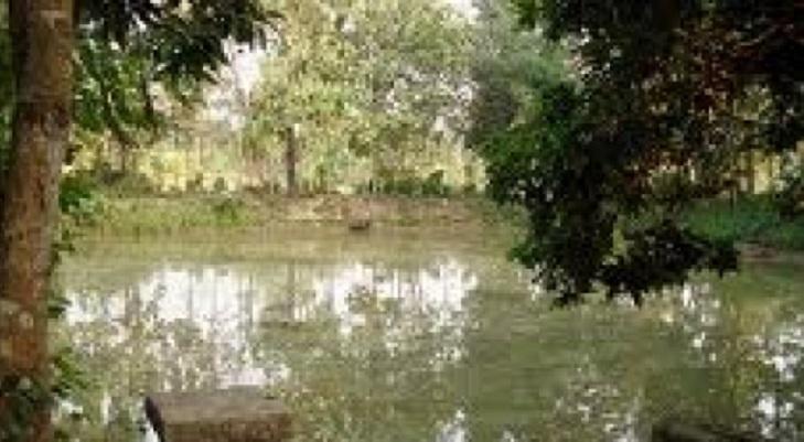 Two kids drown in Nilphamari