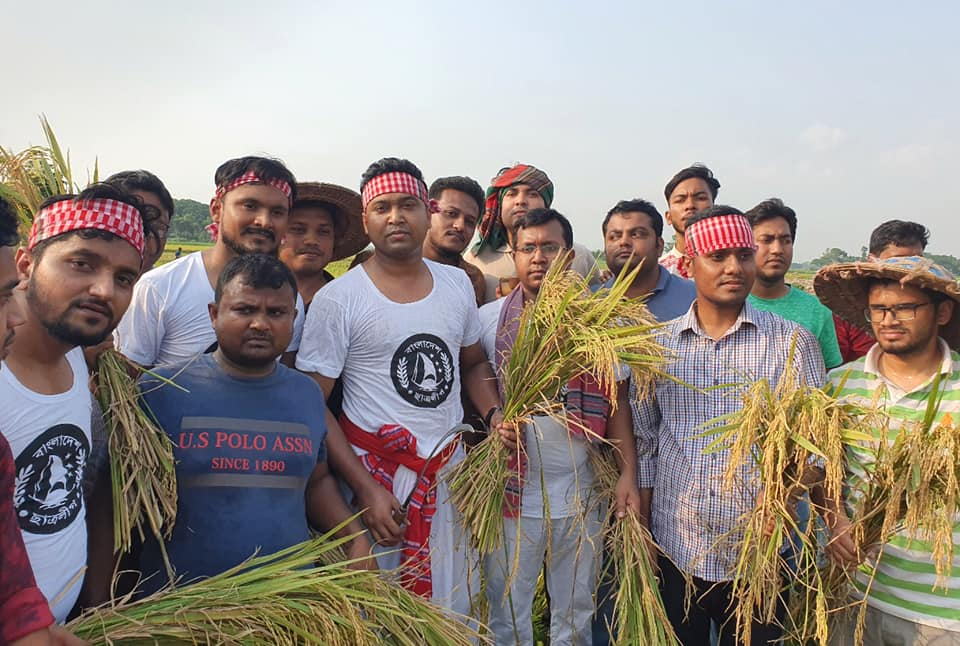 BCL GS Rabbani joins farmers in harvesting paddy