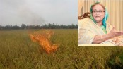 Fire on paddy field: Prime Minister orders investigation