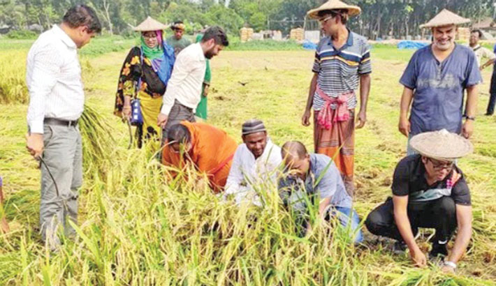 Deputy Commissioner of Chuadanga Gopal Chandra Das along with other government officials joins poor farmers