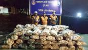 5,000kg Jatka seized in Chattogram